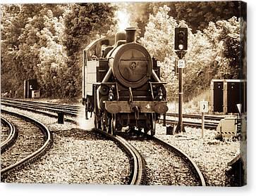 Steam Train Canvas Print by Martina Fagan
