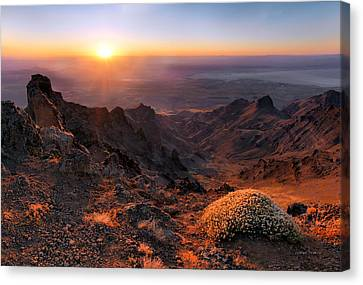 Steens View Canvas Print by Leland D Howard