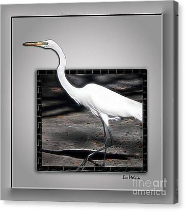 Stepping Out Into A New Dimension Canvas Print by Sue Melvin