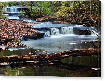 Stepstone Falls Canvas Print by Andrew Pacheco