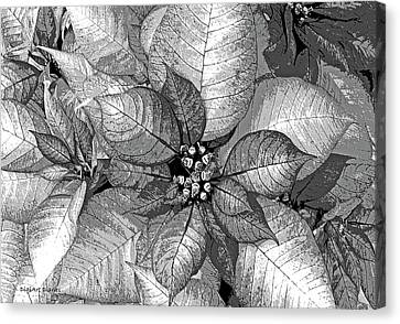 Sterling Shimmer Canvas Print by DigiArt Diaries by Vicky B Fuller
