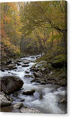 Still Comes Canvas Print by Jon Glaser