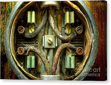 Still Connected Canvas Print by Michael Eingle