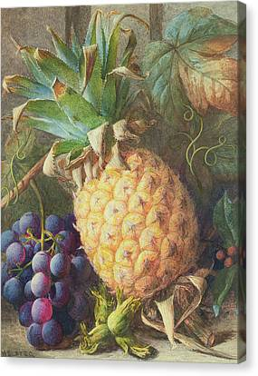 Still Life Of A Pineapple And Grapes  Canvas Print by Charles H Slater