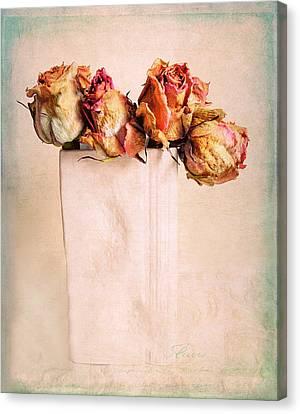 Still Life Rose Canvas Print by Jessica Jenney