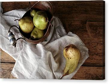 Still-life With Arrangement Of Pears  Canvas Print by Nailia Schwarz