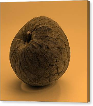Still Life With Cherimoya Canvas Print by Viktor Savchenko