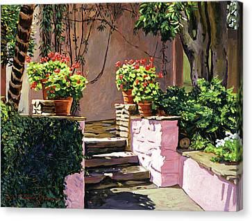 Stone Patio California Canvas Print by David Lloyd Glover