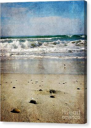 Stones Along The Shore Canvas Print by Laura Iverson