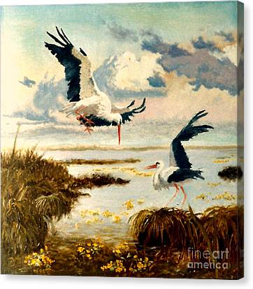 Storks II Canvas Print by Henryk Gorecki