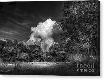 Storm Beyond The Meadow Canvas Print by Marvin Spates