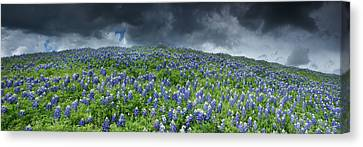 Stormy Blues - Craigbill.com - Open Edition Canvas Print by Craig Bill
