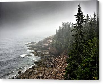 Stormy North Atlantic Coast - Acadia National Park - Maine Canvas Print by Brendan Reals