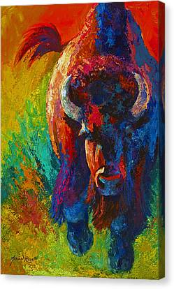 Straight Forward Introduction - Bison Canvas Print by Marion Rose