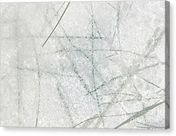 Straws In Ice Canvas Print by Sverre Andreas Fekjan