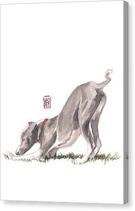Stretching Italian Canvas Print by Debra Jones