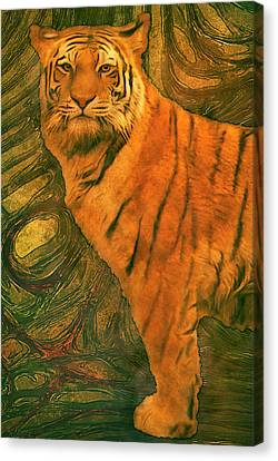 Striped Cat Canvas Print by Jack Zulli