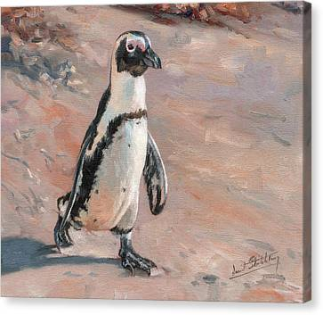 Stroll Along The Beach Canvas Print by David Stribbling