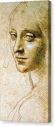 Study For The Angel Of The Virgin Of The Rocks Canvas Print by Leonardo da Vinci