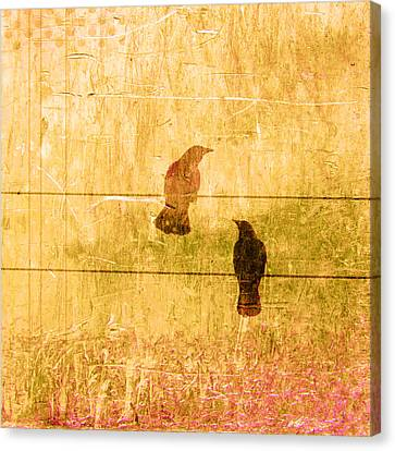 Summer Crows Canvas Print by Carol Leigh