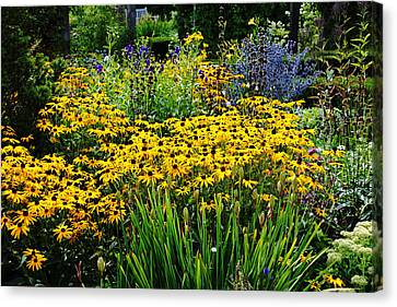 Summer Garden Canvas Print by Debbie Oppermann