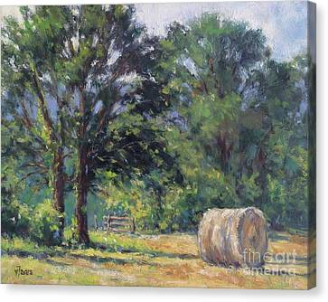 Summer Hay At The Ranch Canvas Print by Vickie Fears