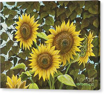 Summer Quintet Canvas Print by Marc Dmytryshyn