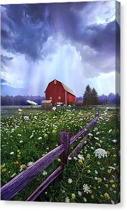 Summer's Shower Canvas Print by Phil Koch