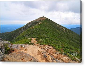 Summit Of Mount Lafayette Canvas Print by Catherine Reusch  Daley
