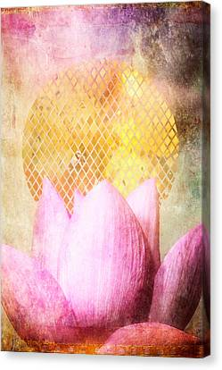 Sun Lotus Canvas Print by Aimee Stewart