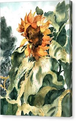 Sundancer Canvas Print by Barbara Jung