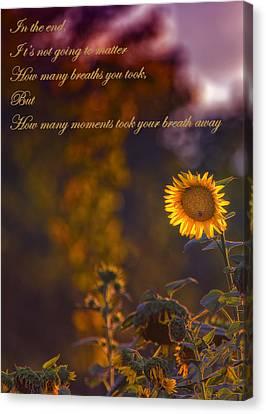 Sunflower Moments Canvas Print by Bill Tiepelman