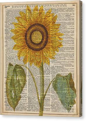 Sunflower Over Dictionary Page Canvas Print by Jacob Kuch