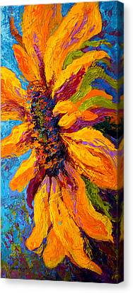 Sunflower Solo II Canvas Print by Marion Rose