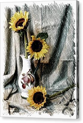 Sunflowers Canvas Print by Pat Exum