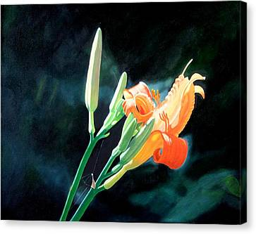 Sunlight Canvas Print by Harlan