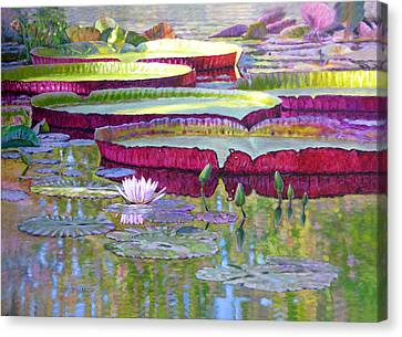 Sunlight On Lily Pads Canvas Print by John Lautermilch