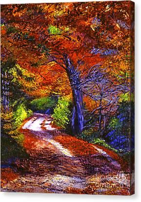 Sunlight Through The Trees Canvas Print by David Lloyd Glover