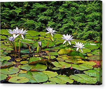Sunlit Lily Pond By Kaye Menner Canvas Print by Kaye Menner