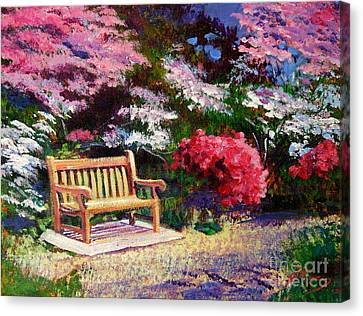 Sunny Bench Plein Aire Canvas Print by David Lloyd Glover