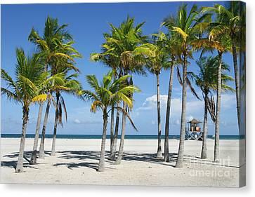 Sunny Miami Beach Canvas Print by Matt Tilghman