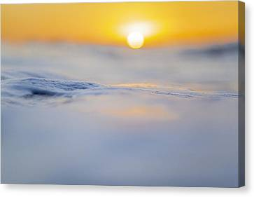 Sunny Side Up Canvas Print by Sean Davey
