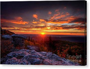 Sunrise At Dolly Sods At Bear Rocks Canvas Print by Dan Friend