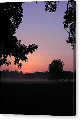 Sunrise Colors Canvas Print by Warren Thompson