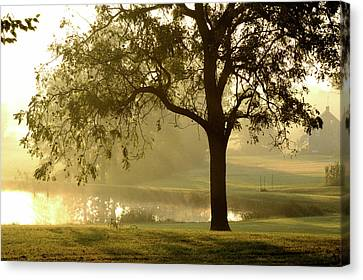 Sunrise Fog Canvas Print by Bill Caldwell