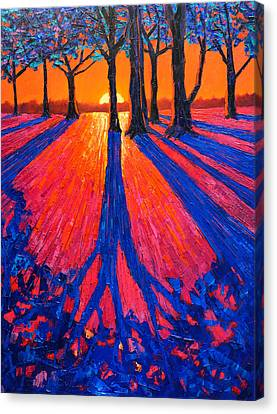 Sunrise In Glory - Long Shadows Of Trees At Dawn Canvas Print by Ana Maria Edulescu