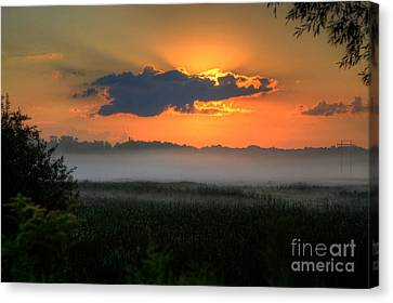 Sunrise In The Swamp-3 Canvas Print by Robert Pearson