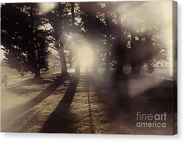 Sunrise Meadow. Artistic Vintage Landscape Canvas Print by Jorgo Photography - Wall Art Gallery