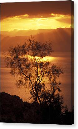 Sunrise Over Mount Nebo In Jordan Canvas Print by Richard Nowitz