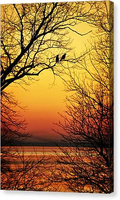 Sunrise Submission Canvas Print by Rebecca Sherman